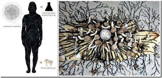 Mushroom Death Suit (8)